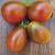 Tomate Prune Noire bio 0,1g