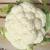 Chou fleur Snowball bio 1g