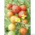 Tomate Cerise bio 0,1g