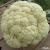 Chou-fleur Géant d'Automne Primus 1,5g
