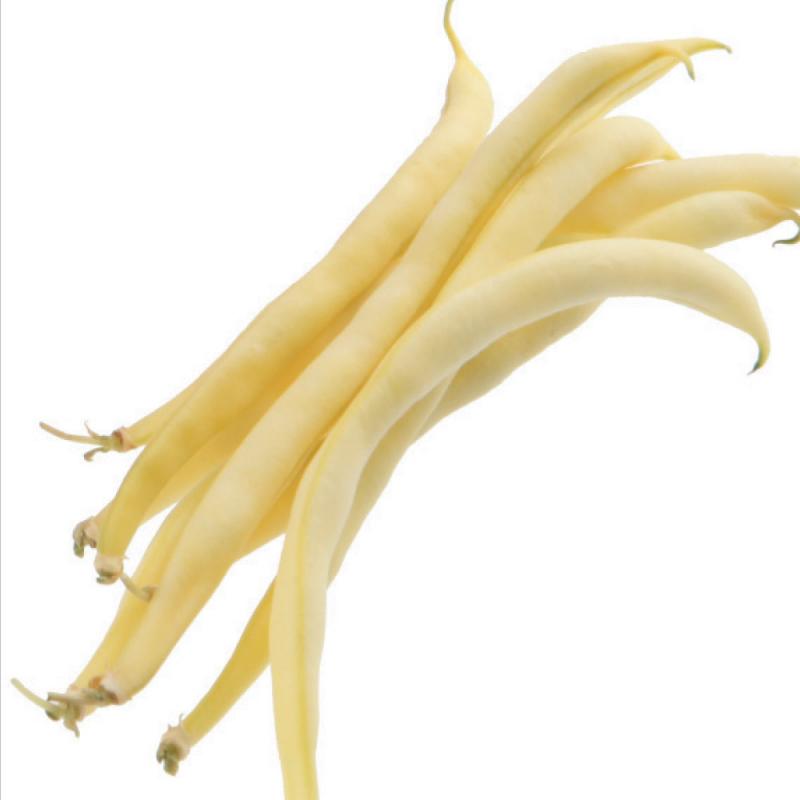 Haricot nain Fructidor bio 50g