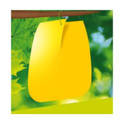 5 pièges à glu jaunes contre mouche de cerise