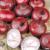 Oignon Rouge Foncé 2,5g