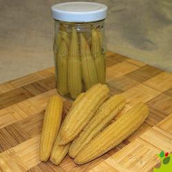 Maïs doux Minigold 10g