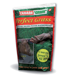 Gazon Perfect Grass 1Kg de CANADA GREEN®