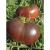 Tomate Noire Russe bio 0,25g