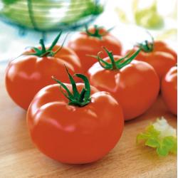 Tomate Brentyla F1 Bio