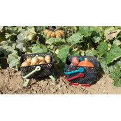 Paniers à Récolte -  Kajo 4L
