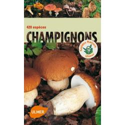 420 Espèces de Champignon