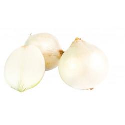 Oignon blanc Snowball (non traité) 250g