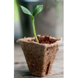 18 Pots Biodégradables Carrés 8cm