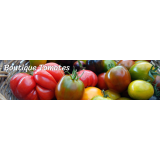 La boutique tomates