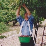 Tout le matériel pour récolter vos fruits et légumes du potager et du verger