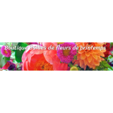 La boutique bulbes de fleurs printemps