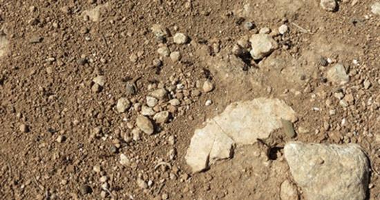Mon sol est calcaire, que puis-je faire ?