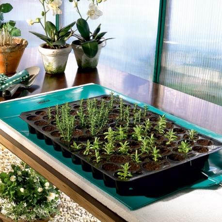 Réaliser ses semis au chaud / sous abri